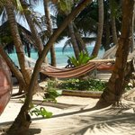 Dine on the beach and enjoy a hammock nap after!