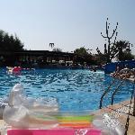 pool area sept 2012