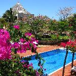 Beautiful pool & bougainvillea.