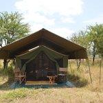 Tent on serengeti safari