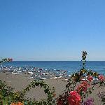 Palm Garden Amed - Strand