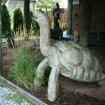 A giant turtle welcomes guests