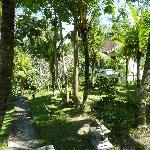 Het huisje achterin de tuin