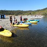 Choosing our kayaks