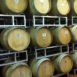 BIG wines in Chianti Classico