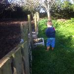Filling the water troughs