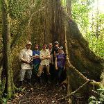 jungle trip on property