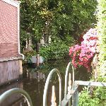 Un endroit verdoyant longeant un canal