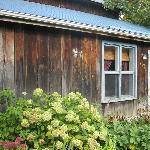 Karma cabin