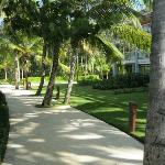 Pathway in resort