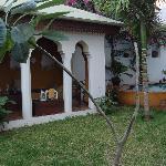 Garden, pool lounge