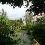 Views from around the Resort
