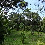 La Palapa gardens