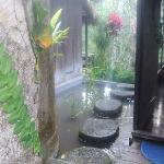here is my room water garden view