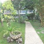 The garden near the rooms.
