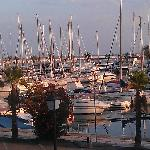 View of marina from my room