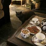 cat Elliott and the tea)