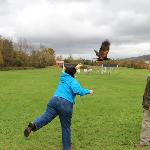 My wife casting out the hawk.