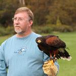 Me with the harris hawk.