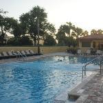 lane pool