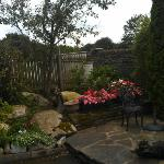 Early morning misty rain enhanced an already lovely corner garden