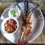 Tiger Prawn for Dinner