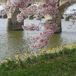 Spring time along the Riverfront