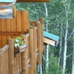 Summer balconies
