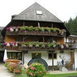 Tannenmühle Foto