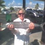 Cero mackerel