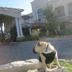 Travelin' Jack checks out the hotel from the Front Lawn