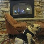 The Lobby offers up a crackling fireside setting to toast a pup's toes by!e h