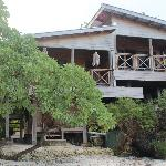 VIEW OF OUR BUNGALO FROM BEACH