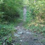 The trail to Becky Lake-- very steep hills and lots of large rocks