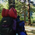 Our backpacks we used to hike into our backpack site (site 1)