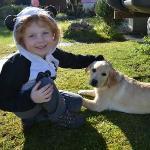 Adorable puppy, Paula