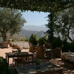Shady breakfast terrace