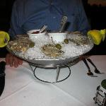 Chilled Oysters on the Half Shell