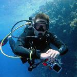 Dive! Dive! Dive!