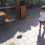 tres sale enfant pied nu sur sol sale