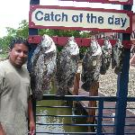 """better said   """"CATCH OF THE DAY"""""""