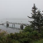 View overlooking their dock
