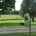 View out on front lawn, swing set