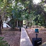 Wooded pathway leading to rooms