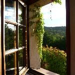 Vackert fönster