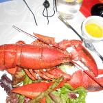 Lobster Dinner - MUST DO!