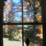kid room view from window in October
