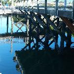 On a clear day even under the dock is beautiful