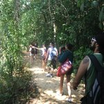 1 hour walking in the deep tropical forest