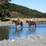 Retreat Activities at Takaro ultimate Retreat, New Zealand